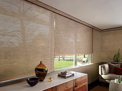 Roller Shade Decorative